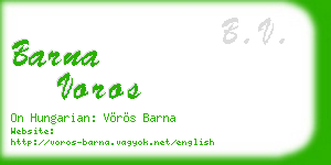 barna voros business card
